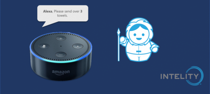 Introducing Intelity Voice Request