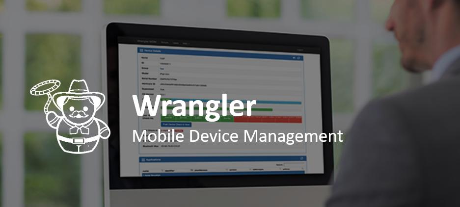 Wrangler Banner on Website